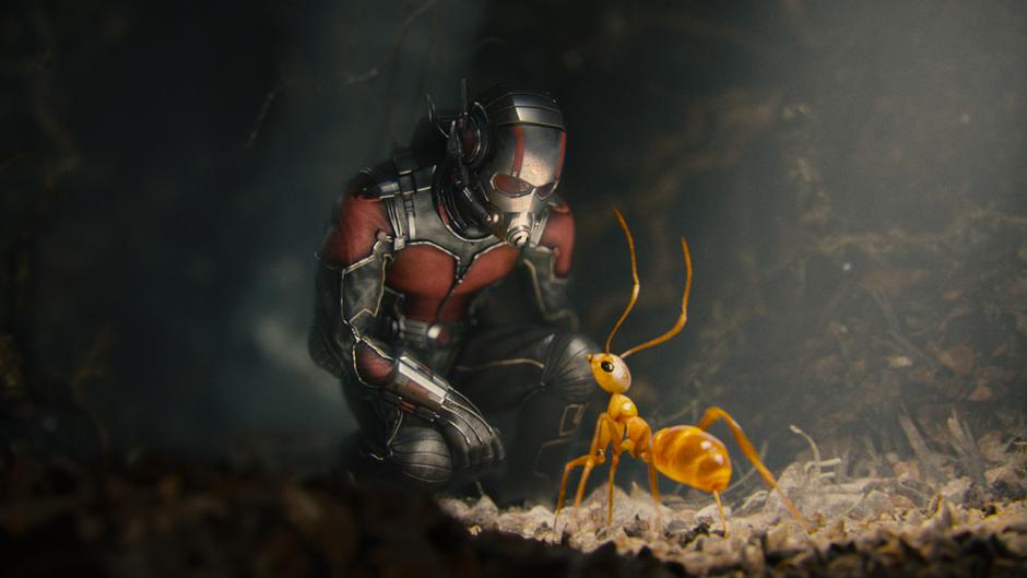 Kampfszene zwischen The Wasp und Ghost